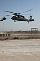 1st Air Cavalry Brigade conducts first air assault DVIDS177498.jpg