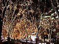 2005 Sendai Pageant of Starlight in Jyozenji-dori Avenue 02.jpg