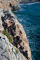 20100927 Iron ore veins and beds Marmaritsa Rhodope Thrace Greece 4.jpg