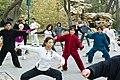 2010 CHINE (4563432547).jpg