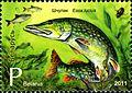 2011. Stamp of Belarus 24-2011-28-07-m2.jpg