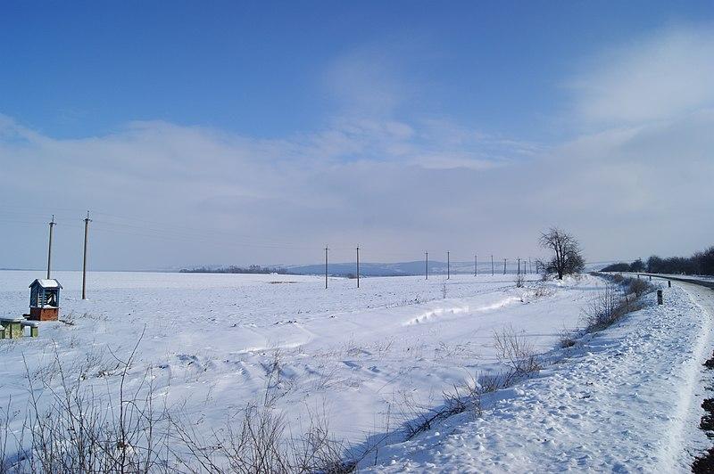 File:2011 - panoramio (18).jpg