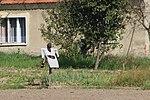 2014-08 Szklary 16.JPG