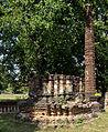 201401021145a (Hartmann Linge) Sukhothai Pa Mamuang.jpg