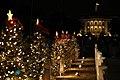 2019 National Chirstmas Tree Lighting (6d027370-7444-4ab5-bf10-ca44994b088b).jpg