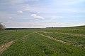 20210417 Naturschutzgebiet Wolferskopf 01.jpg
