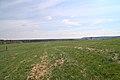 20210417 Naturschutzgebiet Wolferskopf 02.jpg