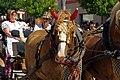 27.8.16 Strakonice MDF Sunday Parade 018 (29200553302).jpg