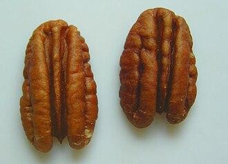Pecan - Image: 2 pecan nut halves