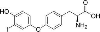 3'-Monoiodothyronine - Image: 3' monoiodothyronine