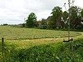 3646 Waverveen, Netherlands - panoramio (4).jpg