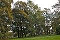46-209-5004 VLubin Park RB 18.jpg