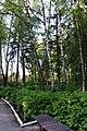 68-250-5006 парк Пирогівці.jpg