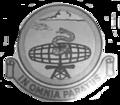 697th Radar Squadron - Emblem.png
