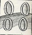 89-minerali. Antimonio.jpg
