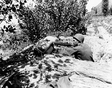 A soldier hides in some bush, aiming at a target off-camera