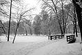 9026vik Park w Pszczynie . Foto Barbara Maliszewska.jpg