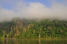 Saint-Georges, French Guiana - WikiVisually