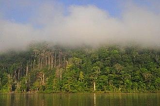 Maroni (river) - Image: ALI, M. (2011 2013). Parc Amazonien de la Guyane. Fleuve Maroni. 1 (13)