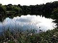 A Burstwick Gravel Pond - geograph.org.uk - 1426183.jpg