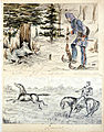 A Lynx - Got 'im at last - Fort McLeod 1880; Lassoed.jpg