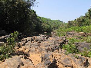 Panathur - Wild stream near Panathur