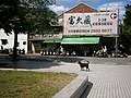 A Wireless Dog in Beitou - panoramio.jpg