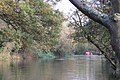 A boat trip up the Leam - geograph.org.uk - 1564465.jpg
