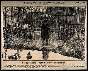 A depressive man standing by a country pond in the pouring r Wellcome V0011388.jpg