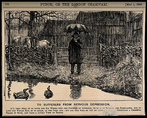 A depressive man standing by a country pond in the pouring r Wellcome V0011388