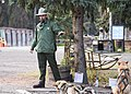 A ranger speaks to a crowd about Denali sled dogs (6b7c949c-7b2d-4846-bbde-c90f13c04e76).jpg