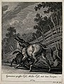 A she-donkey with a suckling foal in a paddock. Etching by J Wellcome V0021157ER.jpg