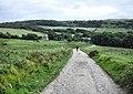 Above Tyneham - geograph.org.uk - 1521758.jpg