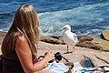 Acadia 2012 08 22 0413 (7958513656).jpg