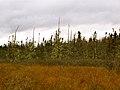 Acadia National Park (8111150126).jpg