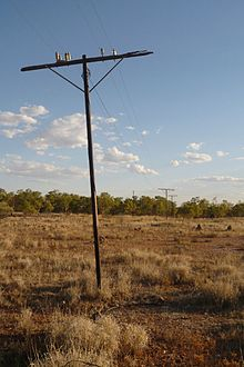 An old wooden telegraph pole standing in a semi-desert grassland plain with low scrub in the distance