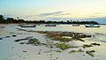 Akumal Beach - Mexico (4303205262).jpg