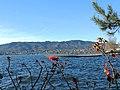 Albis - Uetliberg - Seebad Tiefenbrunnen 2014-01-06 11-59-05 (P7700).JPG
