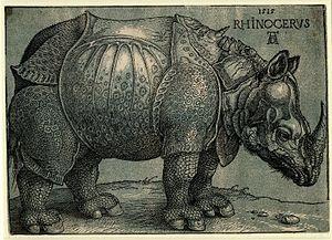 Dürer's Rhinoceros - Janssen's chiaroscuro woodcut
