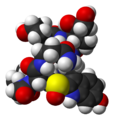 Alpha-amanitin-from-xtal-1k83-3D-vdW.png