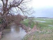 Ampney Brook from Sheeppen Bridge - geograph.org.uk - 350346
