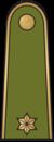 Antpetis sausumos 10 leitenantas.png