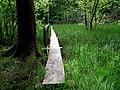 Arboretet - panoramio (1).jpg