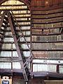 Archbishopric Library detail ladder for bookshelves.jpg