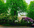 Arlington Square, Islington.jpg