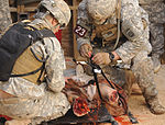 Army Best Medic Competition 121028-A-CK226-082.jpg