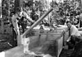 Arthur King, soil specialist at Oregon State College, demonstrates how to build a flume, circa 1930 (5687466771).jpg