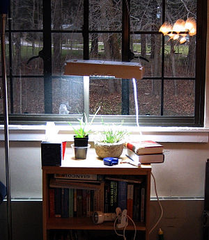 Plants receiving artificial sunlight from an a...
