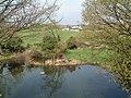 Ashford Park - geograph.org.uk - 160079.jpg