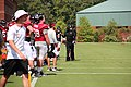 Atl Falcons training camp July 2016 IMG 7729.jpg